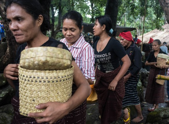 Lewokluokofferings2