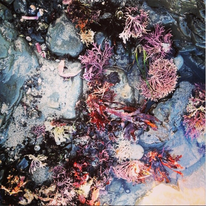 Screen Shot 2014-01-31 at 12.59.43 AM