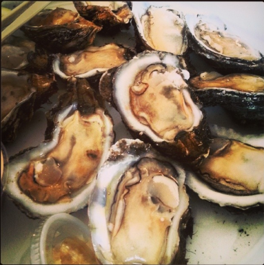 salvos oysters